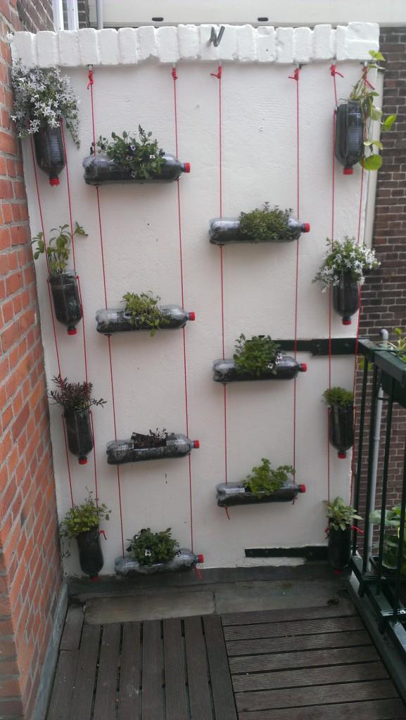 De verticale tuin het eindresultaat